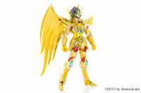 Sagittarius Seiya New Gold Cloth from Saint Seiya Omega Oiz2jgUz
