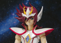 [SH Figuarts] Pegasus Koga (27 Décembre 2012) AbkfFPru
