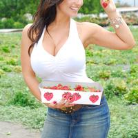 Дениз Милани, фото 4243. Denise Milani Plucking Strawberry., foto 4243