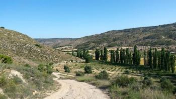 31/05/2015 - Propuestas gay-eteras... Morata-Tielmes-Arganda: 40km Ruta de las fuentes 2GcSgW7e