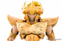 Leo Aiolia Gold Cloth ~Original Color Edition~ AceitORy