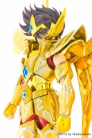Sagittarius Seiya New Gold Cloth from Saint Seiya Omega W1wE43CR