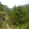 Hiking 2012 June 16 - 頁 4 XHgTFWYl