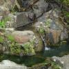 水長流 2012-09-22 AbzQolDq