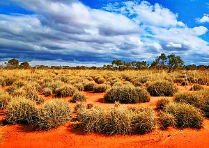 Great Victoria desert wallpapers
