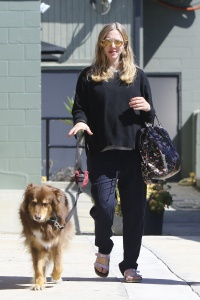 Amanda Seyfried - Walking her Dog in Studio City - March 8th 2017