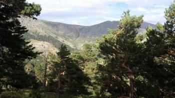 17/08/2016. Valle de la Barranca, Bola del Mundo y Tubería EjpHl4Nc
