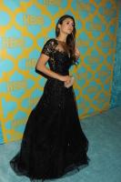 HBO's Post Golden Globe Awards Party (January 11) BatMrMap