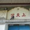 錦上荃灣 2013 February 23 AbjutKAP