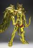 Sagittarius Seiya Gold Cloth AdvIuQIn