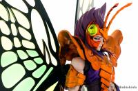 Papillon Myû Surplice - Page 2 Adicke0F