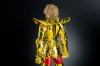Sagittarius Seiya Gold Cloth Addg09xl