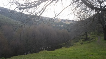 25/01/2015- Pontón de La Oliva, La Concha, Alpedrete, El Pontón: 48km - Bky7VdTB