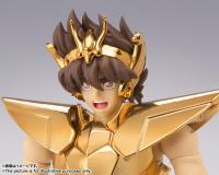[Myth Cloth EX] Pegasus New Bronze Cloth - Masami Kurumada Career 40th Anniversary Edition (Novembre 2014) IDcOhUmS