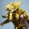 Sion Grand Pope & Aries Surplice Tamashii Asian 2008