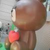 Peter Pan JOLLY ROGER 5P3b4xEj