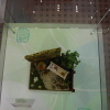 Miniature Exhibition 祝節盛會 AbgNJ4qZ