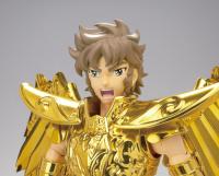 Sagittarius Seiya Gold Cloth AbvwGiVy