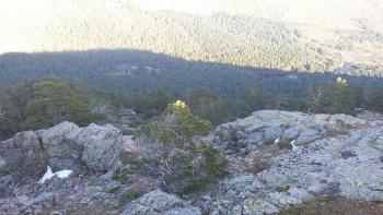 20/02/2017. Valle de la Barranca, Ortiz, Bambi, El Ventorrillo y vuelta para la Barranca. FAWtgvT5