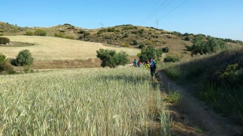 31/05/2015 - Propuestas gay-eteras... Morata-Tielmes-Arganda: 40km Ruta de las fuentes QIAzDXu5