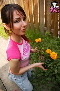 07-05 - Adelaide - Backyard Gardener