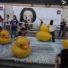 Rubber Duck Abxpvq6e
