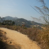 鯉魚擺尾 2012-02-11 Hiking - 頁 2 AKJ3LCX9