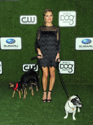 Maggie Lawson - 2016 World Dog Awards @ the Barker Hangar in Santa Monica - 01/09/16