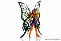 Papillon Myû Surplice - Page 2 AcfA6fhN