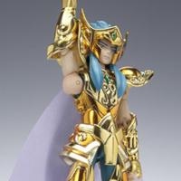 Aquarius Camus Gold Cloth AblSW6mB