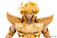 Leo Aiolia Gold Cloth ~Original Color Edition~ Abjrm4u8