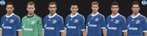 Download PES 2014 Schalke 04 Facepack by spiriusanto