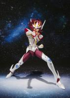 [SH Figuarts] Pegasus Koga (27 Décembre 2012) AbhzFEtr
