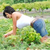 Дениз Милани, фото 4222. Denise Milani Plucking Strawberry., foto 4222