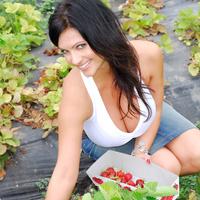 Дениз Милани, фото 4220. Denise Milani Plucking Strawberry., foto 4220
