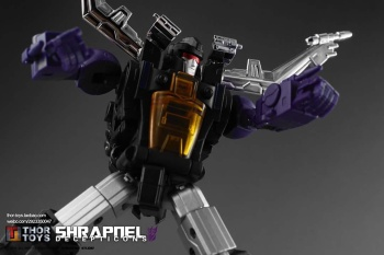 [Fanstoys] Produit Tiers - Jouet FT-12 Grenadier / FT-13 Mercenary / FT-14 Forager - aka Insecticons - Page 3 Cjx4QEp4