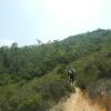 Hiking 2012 June 16 - 頁 4 NJAIYkGh