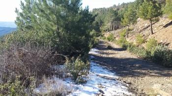 25/01/2015- Pontón de La Oliva, La Concha, Alpedrete, El Pontón: 48km - UGbK4qaY