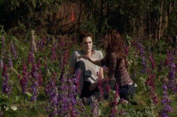 Imágenes desde el BTS de Breaking Dawn Part 1 y 2 AbnNUv9V
