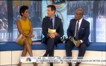 Tamron Hall - Today Show (6-24-13)