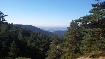 21/08/2016. Camino viejo de Segovia y los poetas 4N0fCYYC