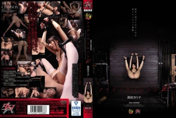 [DASD-326] Nishida Karina - Iron Crimson 10