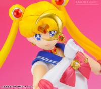 Goodies Sailor Moon Accpufzx
