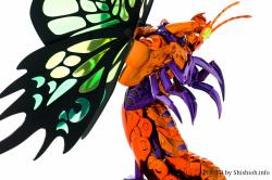 [Imagens] Myu de Papillon  Ackwo8nx