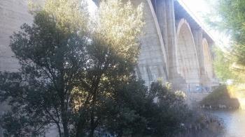 9/03/2016. El Pardo y puente de la bruja 9s4VXMfi