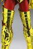 Sagittarius Seiya Gold Cloth AderM8U4