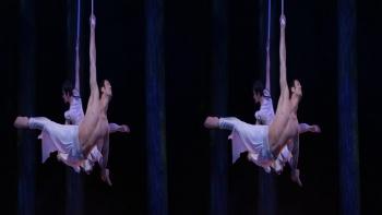 Cirque Du Soleil Worlds Away 3D (2012) 1080p.BluRay.Half-SBS.x264-Public3D