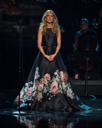 Celine Dion - 2015 American Music Awards @ Microsoft Theater in Los Angeles - 11/22/15