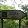錦上荃灣 2013 February 23 Acb5NSAf