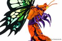Papillon Myû Surplice - Page 2 AcruyFqG